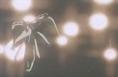 デンドロビウムのフレア・ディスペンサー